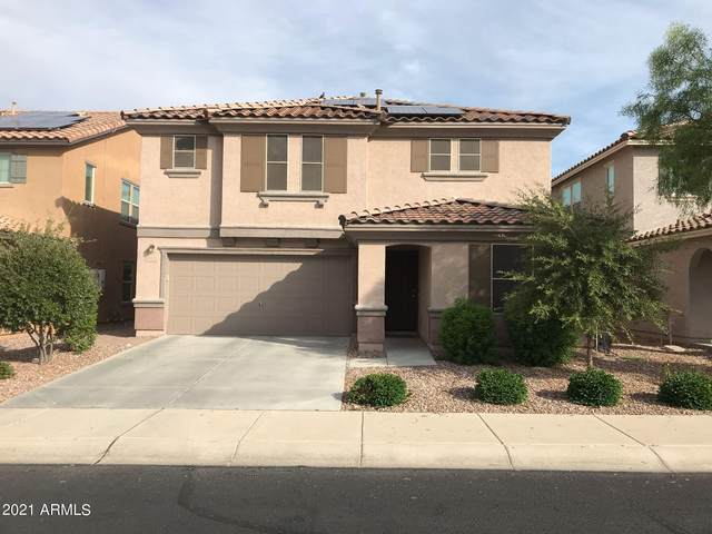 25718 N 122ND Avenue, Peoria, AZ 85383 (MLS #6312719) :: The Daniel Montez Real Estate Group