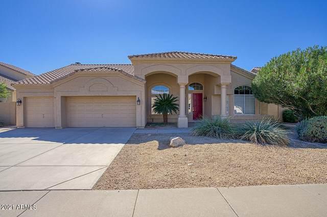 5583 W Orchid Lane, Chandler, AZ 85226 (MLS #6312749) :: The Daniel Montez Real Estate Group