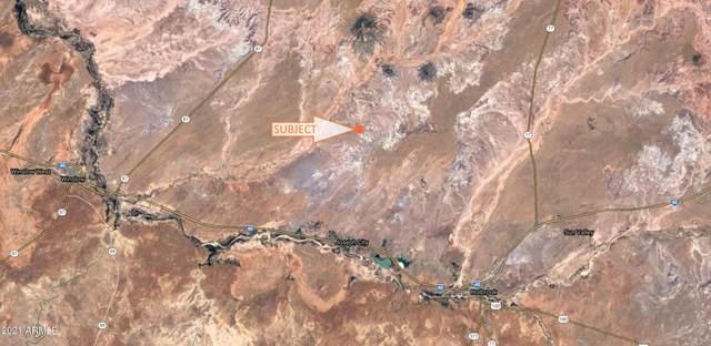 8 Old Ranch Road, Joseph City, AZ 86032 (MLS #6312768) :: West Desert Group   HomeSmart