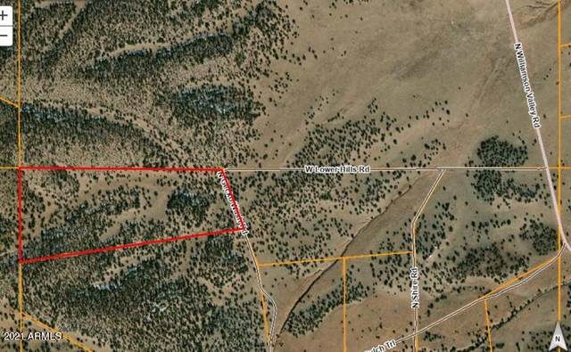 0 N Gecko Wash Drive, Seligman, AZ 86337 (#6312778) :: The Josh Berkley Team
