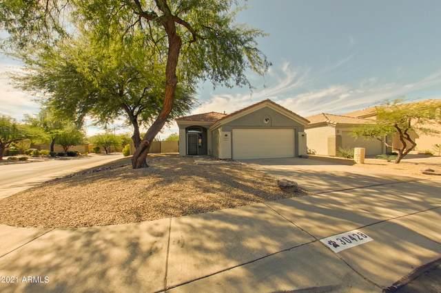 30428 N 43RD Place, Cave Creek, AZ 85331 (MLS #6312789) :: Team Faber