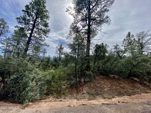 Lot 46 E Saddleback Trail, Payson, AZ 85541 (#6312808) :: The Josh Berkley Team