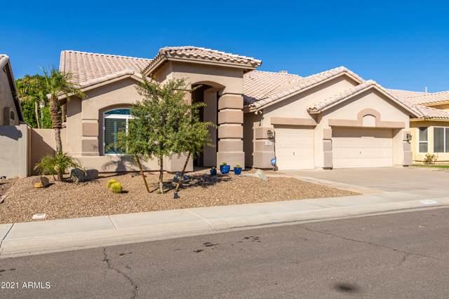 4580 W Flint Street, Chandler, AZ 85226 (MLS #6312813) :: My Home Group