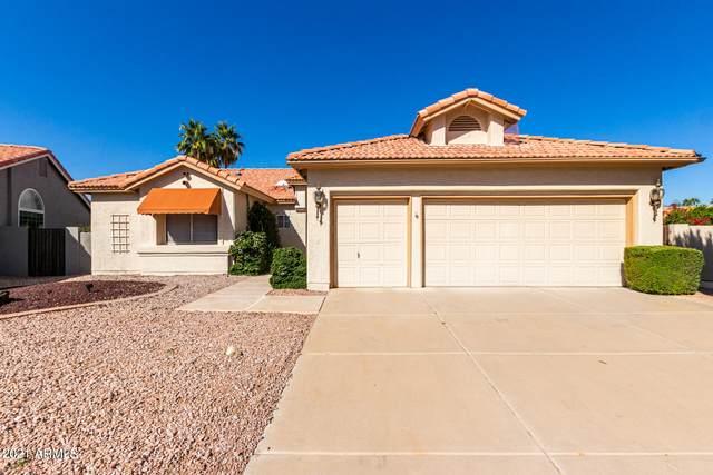 24640 S Foxglenn Drive, Sun Lakes, AZ 85248 (#6312849) :: The Josh Berkley Team