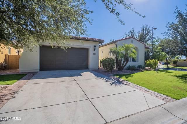 1159 W Tonto Place, Chandler, AZ 85248 (MLS #6312919) :: The Garcia Group