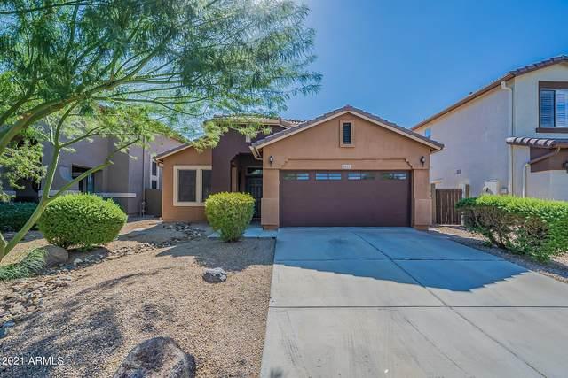 4613 W Fortune Drive, Anthem, AZ 85086 (MLS #6312929) :: Elite Home Advisors