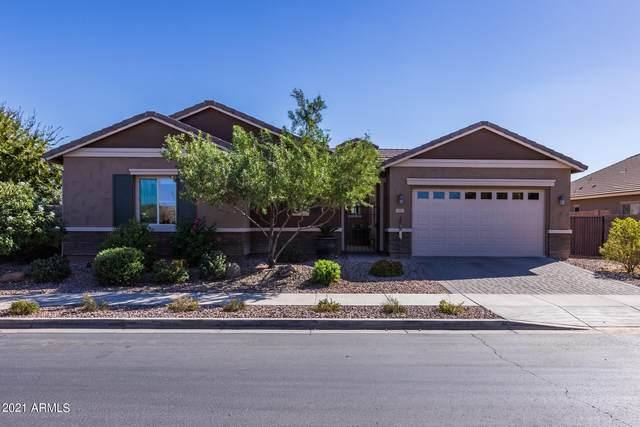 20455 E Raven Drive, Queen Creek, AZ 85142 (MLS #6312939) :: Team Faber