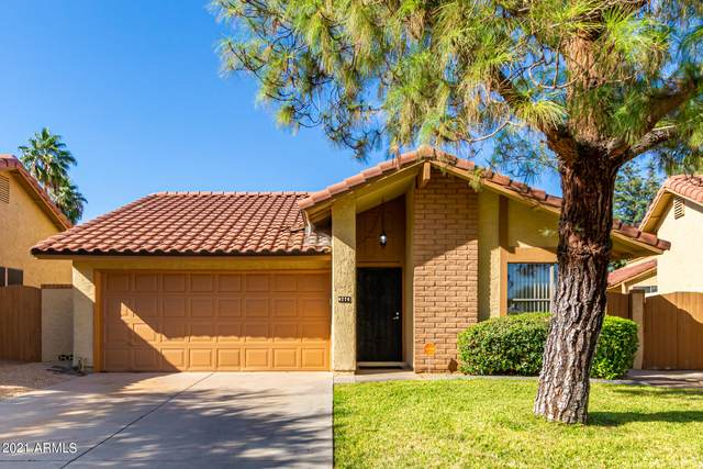 4774 E Ute Court, Phoenix, AZ 85044 (MLS #6313060) :: My Home Group