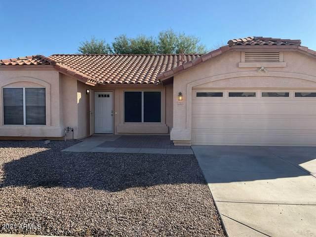 12313 W Edgemont Avenue, Avondale, AZ 85392 (MLS #6313069) :: Elite Home Advisors