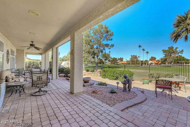 10020 E Coopers Hawk Drive, Sun Lakes, AZ 85248 (MLS #6313181) :: Balboa Realty