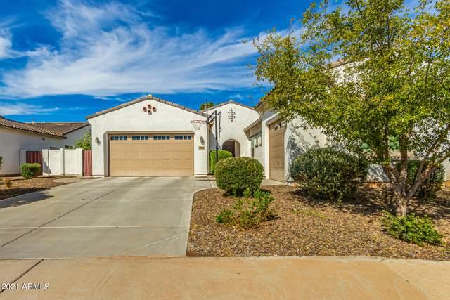 2850 E Iris Drive, Chandler, AZ 85286 (MLS #6313182) :: The Garcia Group