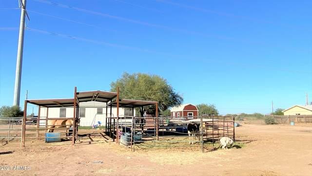 27795 W Cornman Road, Casa Grande, AZ 85193 (MLS #6313183) :: Team Faber
