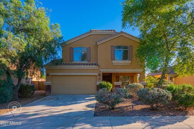 23693 W Grove Street, Buckeye, AZ 85326 (MLS #6313194) :: Team Faber