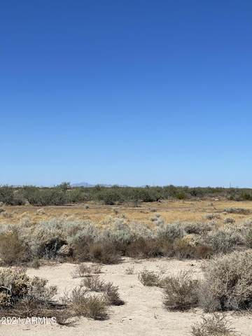 NHN E Shed Road, Unincorporated County, AZ 85128 (MLS #6313200) :: Selling AZ Homes Team