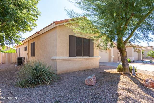 18109 W Camino Real Drive, Surprise, AZ 85374 (MLS #6313218) :: The Garcia Group