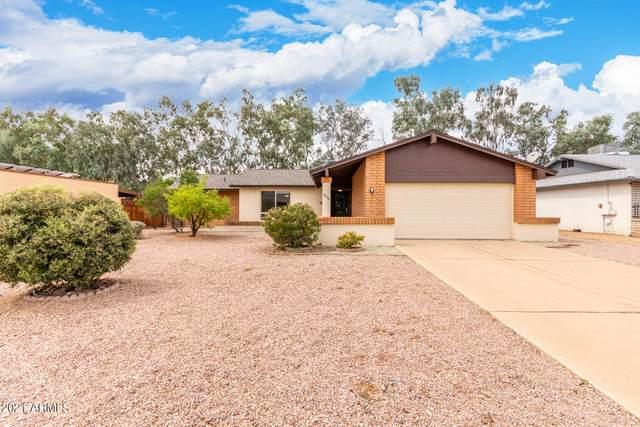8834 N 105TH Lane, Peoria, AZ 85345 (MLS #6313220) :: Elite Home Advisors
