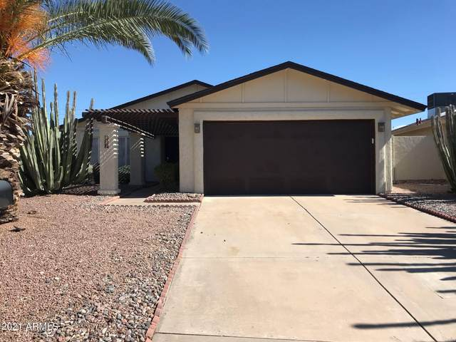 917 N Roosevelt Circle, Scottsdale, AZ 85257 (MLS #6313236) :: Team Faber