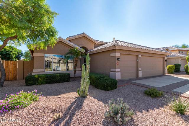 4409 E Mountain Sage Drive, Phoenix, AZ 85044 (MLS #6313271) :: Yost Realty Group at RE/MAX Casa Grande