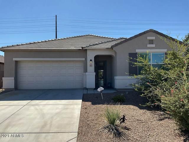 2925 W Kowalsky Lane, Phoenix, AZ 85041 (MLS #6313359) :: Yost Realty Group at RE/MAX Casa Grande