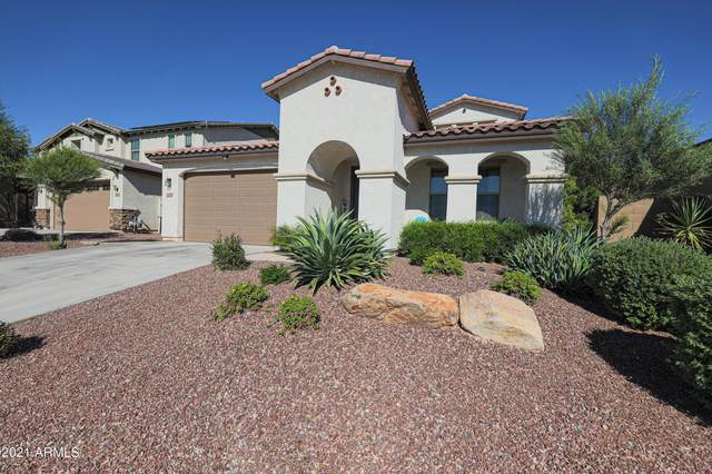 22323 N 100TH Lane, Peoria, AZ 85383 (MLS #6313374) :: Elite Home Advisors