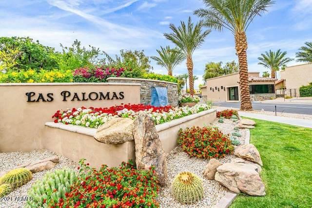 8479 N 84TH Place, Scottsdale, AZ 85258 (MLS #6313380) :: The Ethridge Team
