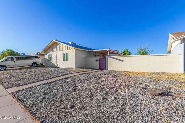 3350 W Mauna Loa Lane, Phoenix, AZ 85053 (MLS #6313398) :: The Ethridge Team