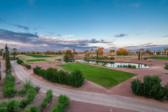 22409 N Del Monte Court, Sun City West, AZ 85375 (MLS #5655003) :: The Everest Team at My Home Group