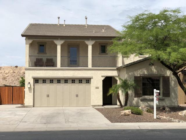 29613 N 69TH Avenue, Peoria, AZ 85383 (MLS #5691799) :: Yost Realty Group at RE/MAX Casa Grande