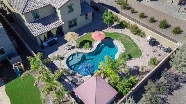 4881 S Joshua Tree Lane, Gilbert, AZ 85298 (MLS #5835170) :: Revelation Real Estate