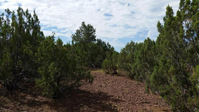 LOT 108 N Ranch Road, Vernon, AZ 85940 (MLS #5105455) :: NextView Home Professionals, Brokered by eXp Realty