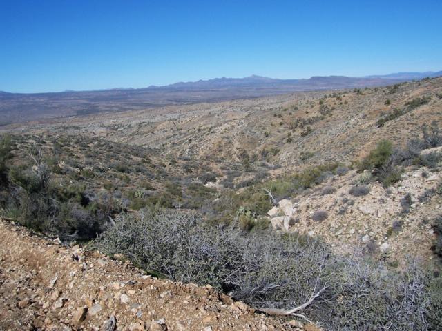 Lot 97 New Water Cove, Kingman, AZ 86401 (MLS #5205338) :: Brett Tanner Home Selling Team