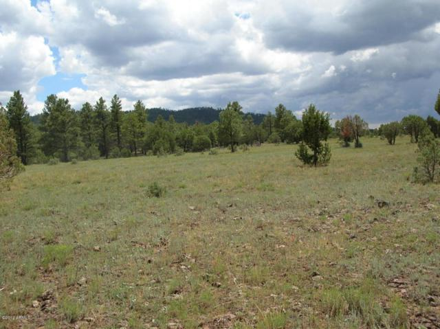 Lot #3 Porter Mountain Road, Lakeside, AZ 85929 (MLS #5265833) :: Arizona Home Group