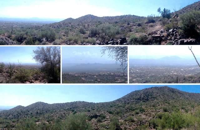 16007 N Diamondback Trail, Fountain Hills, AZ 85268 (MLS #5298763) :: Yost Realty Group at RE/MAX Casa Grande