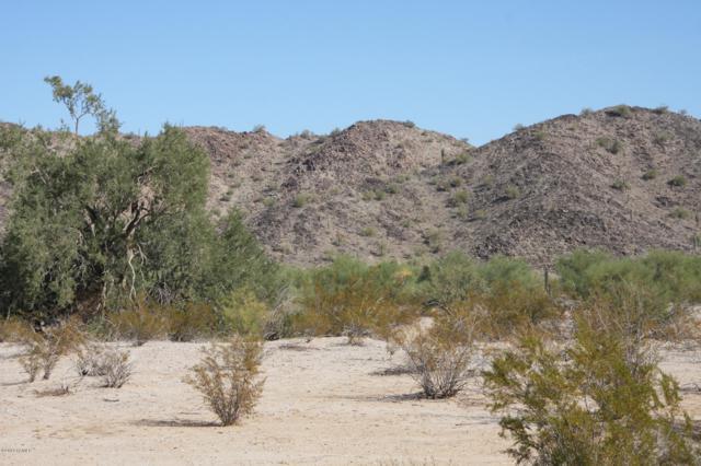 55410 W Ivory Road, Maricopa, AZ 85139 (MLS #5362505) :: Brett Tanner Home Selling Team