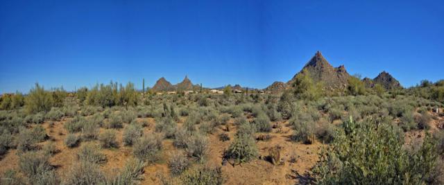 10791 E Pinnacle Peak Road, Scottsdale, AZ 85255 (MLS #5395890) :: The Garcia Group @ My Home Group