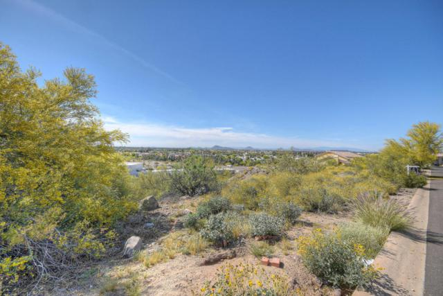 15026 N 15TH Drive, Phoenix, AZ 85023 (MLS #5403163) :: The Ellens Team