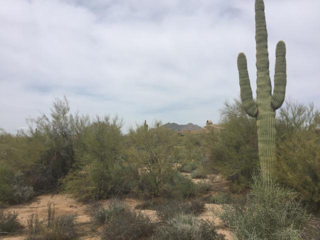 7352 E Lower Wash Pass, Scottsdale, AZ 85266 (MLS #5409848) :: neXGen Real Estate