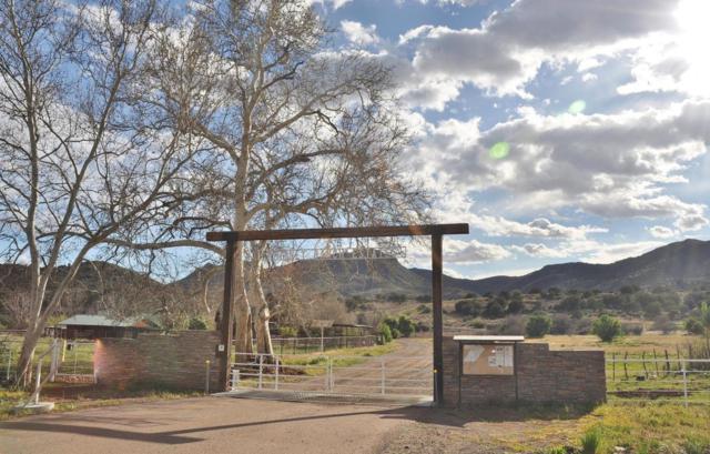27812 E Mount Ord Drive, Sunflower, AZ 85263 (MLS #5419957) :: The Jesse Herfel Real Estate Group