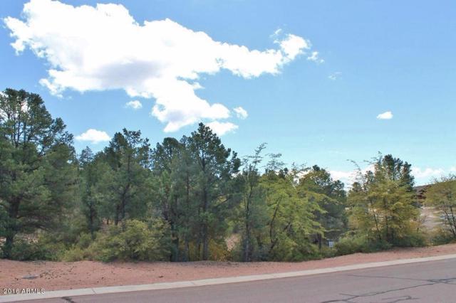 801 N Thunder Ridge Circle, Payson, AZ 85541 (MLS #5436953) :: Brett Tanner Home Selling Team