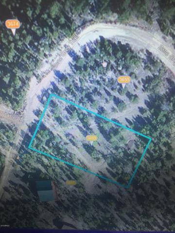 3653 Zane Grey Trail, Heber, AZ 85928 (MLS #5453278) :: Riddle Realty Group - Keller Williams Arizona Realty
