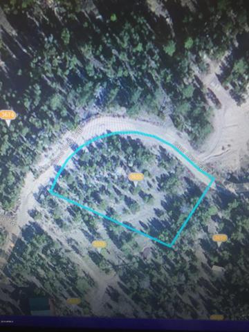 3655 Zane Grey Trail, Heber, AZ 85928 (MLS #5453279) :: Riddle Realty Group - Keller Williams Arizona Realty