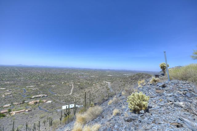 346XX N Secluded Lane, Carefree, AZ 85377 (MLS #5453478) :: Lucido Agency