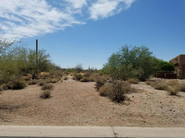27108 N Palo Fiero Road, Rio Verde, AZ 85263 (MLS #5454058) :: The Wehner Group