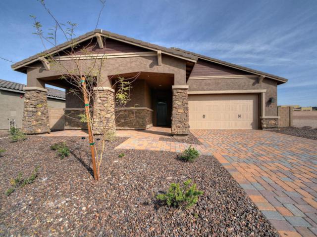11850 W Lone Tree Trail, Peoria, AZ 85383 (MLS #5484221) :: Kortright Group - West USA Realty