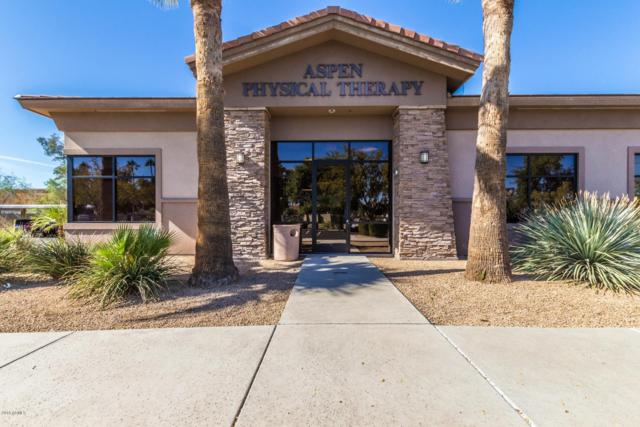 1345 E Mckellips Road #101, Mesa, AZ 85203 (MLS #5500789) :: The Daniel Montez Real Estate Group