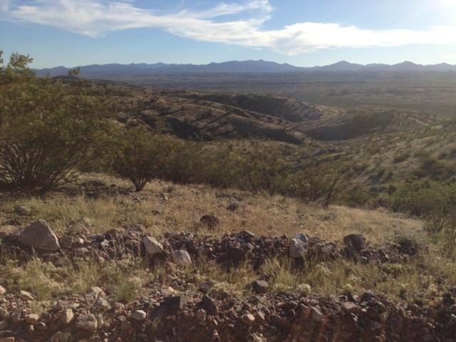 Lot 63 E Mountain Goat Road, Kingman, AZ 86401 (MLS #5526377) :: The Wehner Group