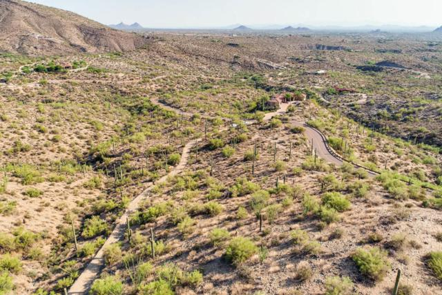 40741 N Longhorn Drive, Scottsdale, AZ 85262 (MLS #5527871) :: Yost Realty Group at RE/MAX Casa Grande