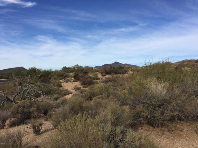 10723 E Rising Sun Drive, Scottsdale, AZ 85262 (MLS #5538133) :: Brett Tanner Home Selling Team