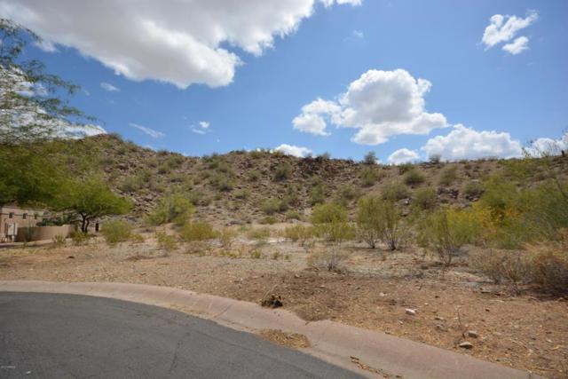 14252 S 14TH Street, Phoenix, AZ 85048 (MLS #5548156) :: Yost Realty Group at RE/MAX Casa Grande