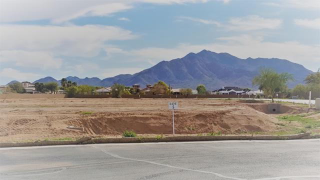 7287 S Twilight Court, Queen Creek, AZ 85142 (MLS #5555604) :: The W Group